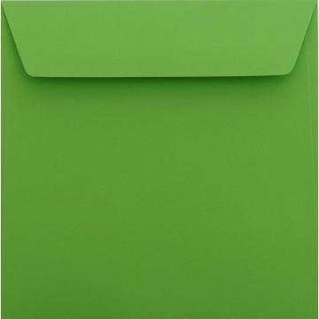 25 / Quadratisch/Briefumschläge / 17 x 17 cm / 170 x 170 mm/Gras Grün/Verschluss: Kuverts mit Haftstreifen/Grammatur: 120 g/m²