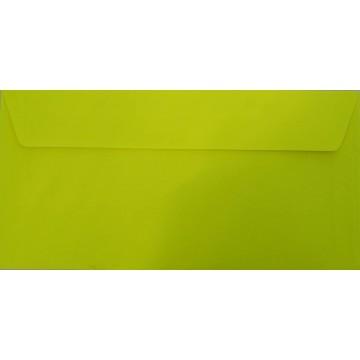 25 DIN lang Briefumschläge Hell Grün Kuvert 11 x 22 cm mit Haftstreifen, Grammatur 120 g/m²