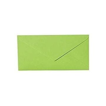 25 DIN lang Briefumschläge Gras Grün  Kuvert 11 x 22 cm mit Nassklebung , Grammatur 120 g/m²